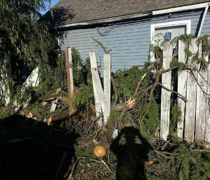 Storm in Oregon City Causes Tree to Damage Fence
