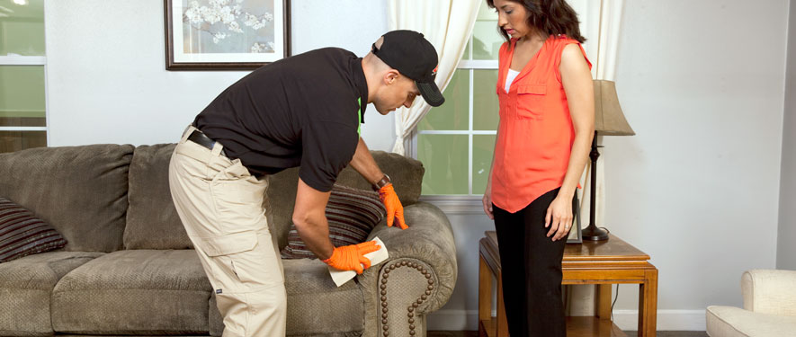 Oregon City, OR carpet upholstery cleaning